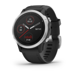 Garmin Fenix 6S, Silver, Black Band (010-02159-01)